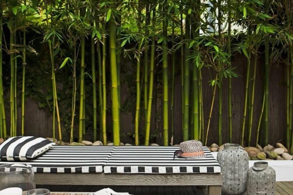 Dekorasi Taman Dinding Bambu