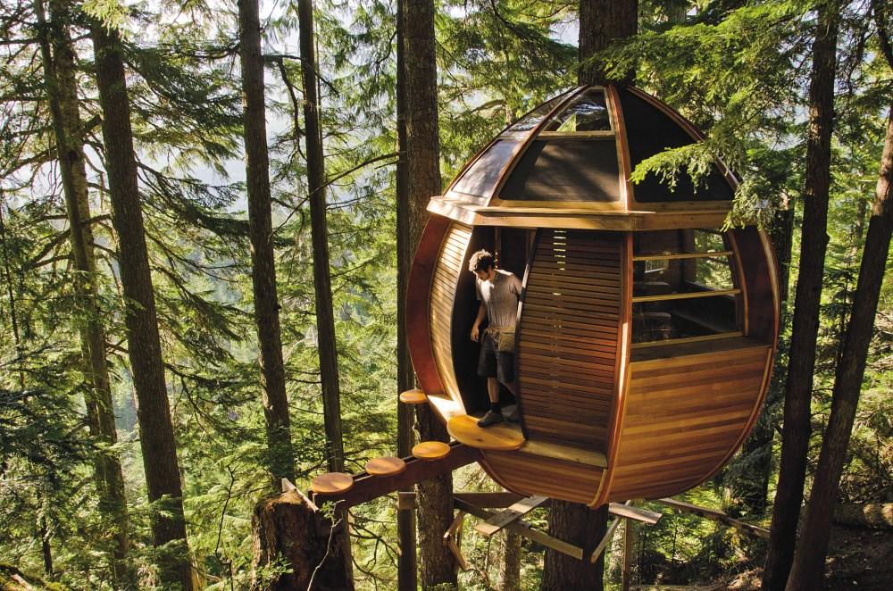 Rumah Pohon Dream Hatcher