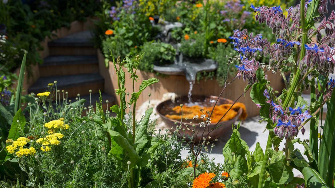 6 Desain Taman Yang Bisa Menyegarkan Pikiranmu