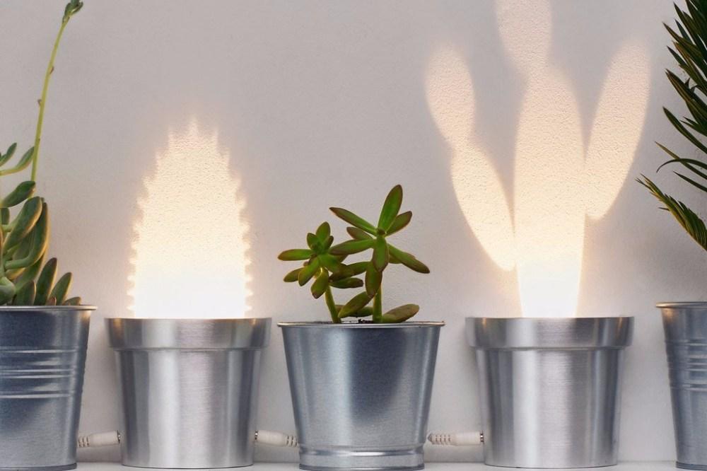 Lampu Kaktus