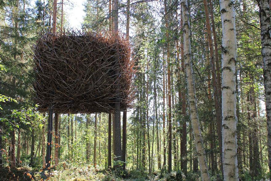 Rumah Pohon Sangkar Burung