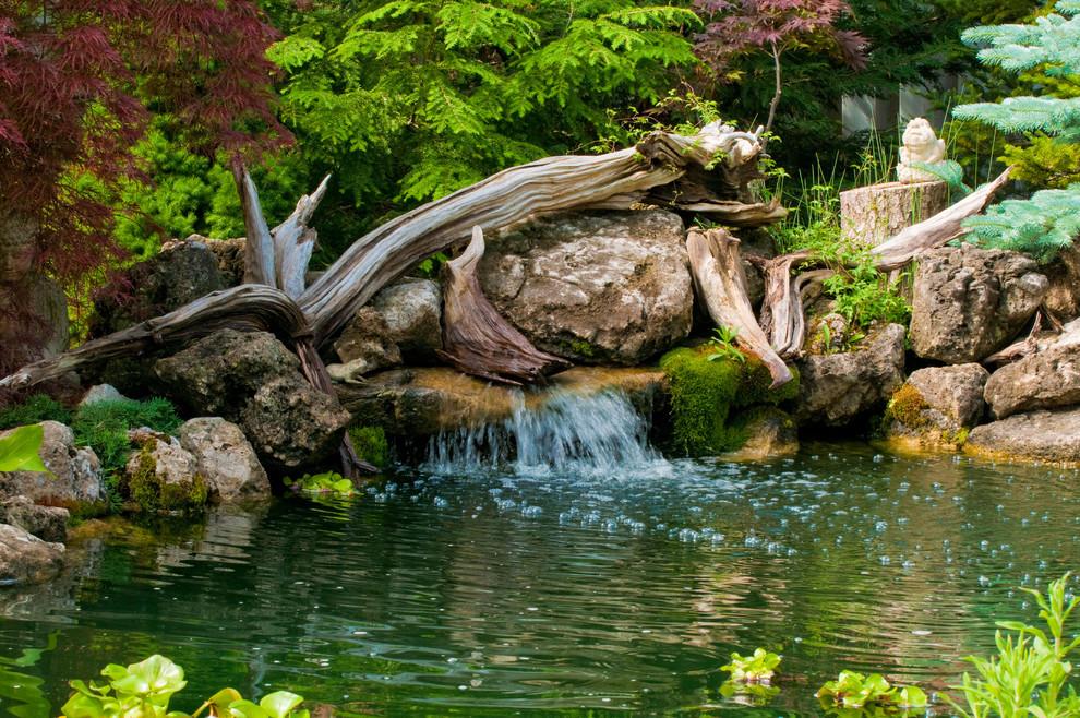 Kolam Ikan Minimalis Driftwood