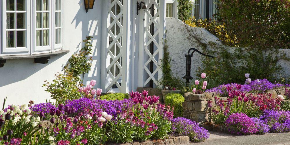 Download 550 Gambar Desain Taman Untuk Bunga Anggrek HD Gratid