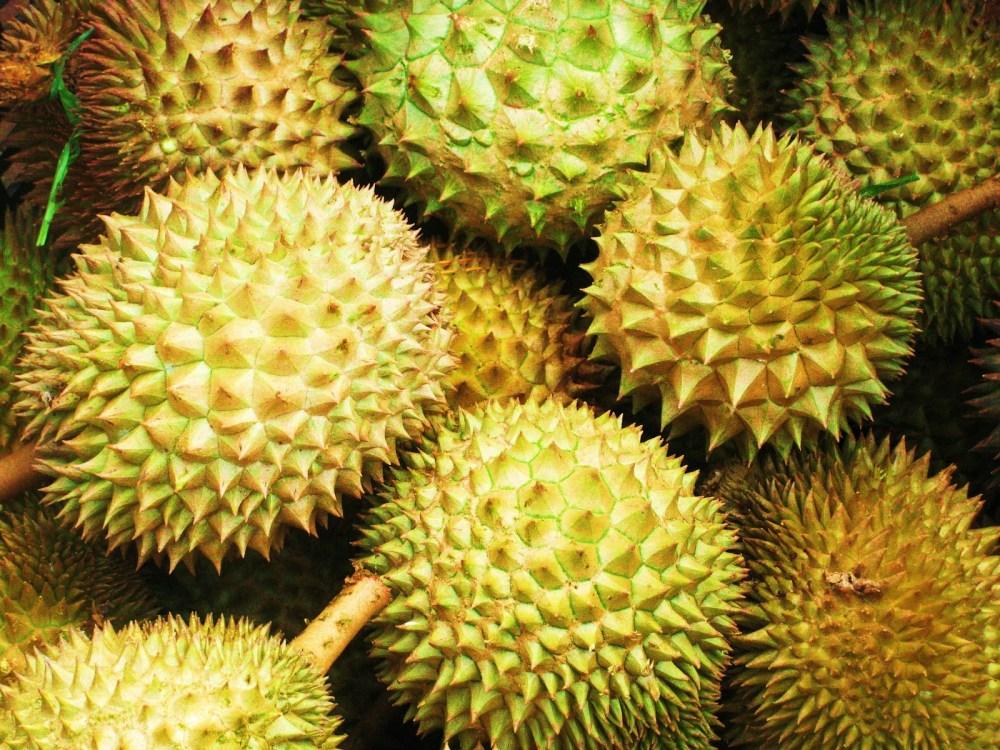Membersihkan Tungau Dengan Durian