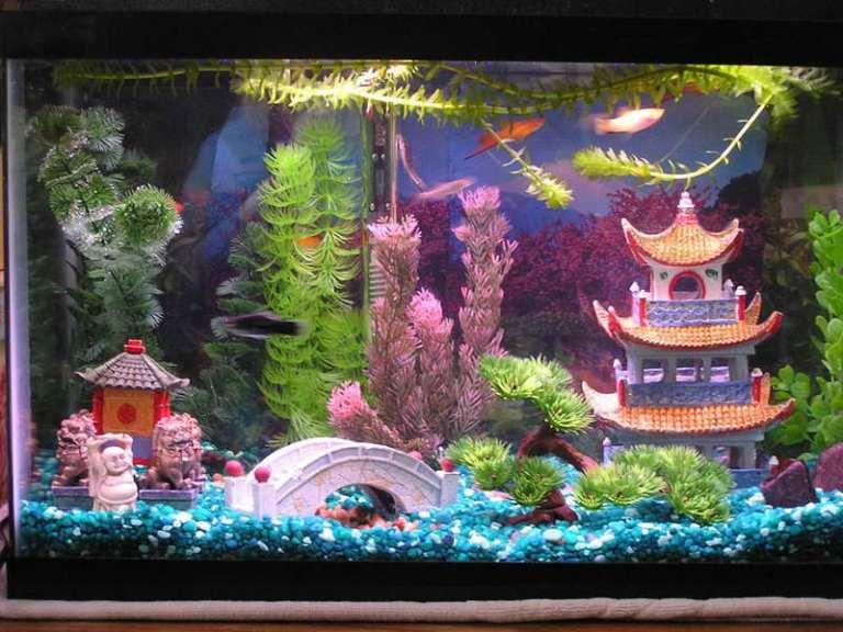 Tema Hiasan Aquarium