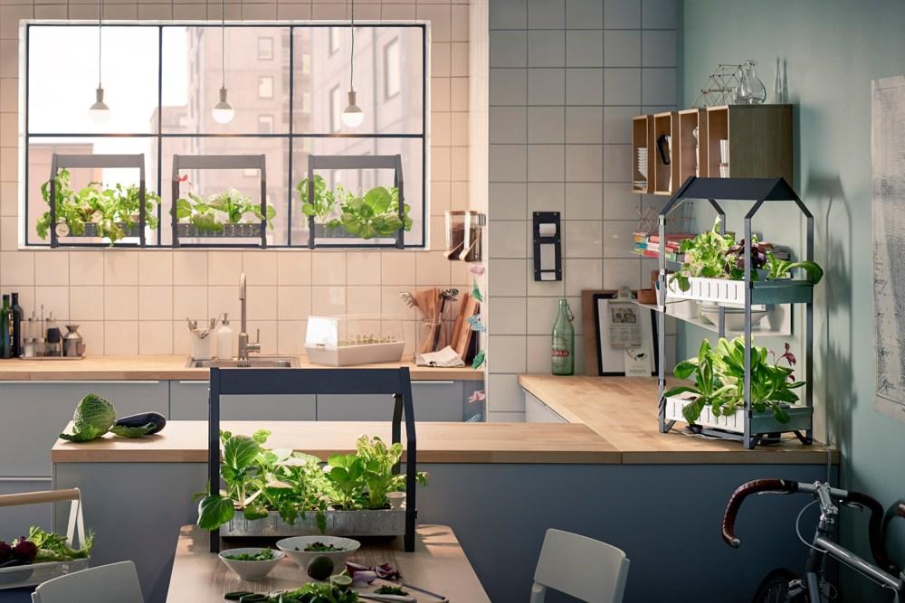 Download Desain Interior Rumah Minimalis  ingin punya taman minimalis di dalam rumah ini 9 hal yang