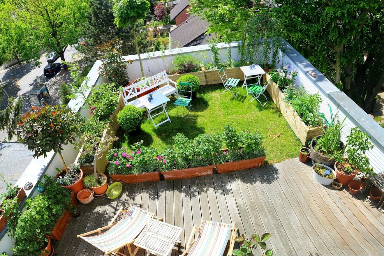 Yuk Manfaatkan Atap Rumahmu Jadi Kebun Sayuran Dan Bunga