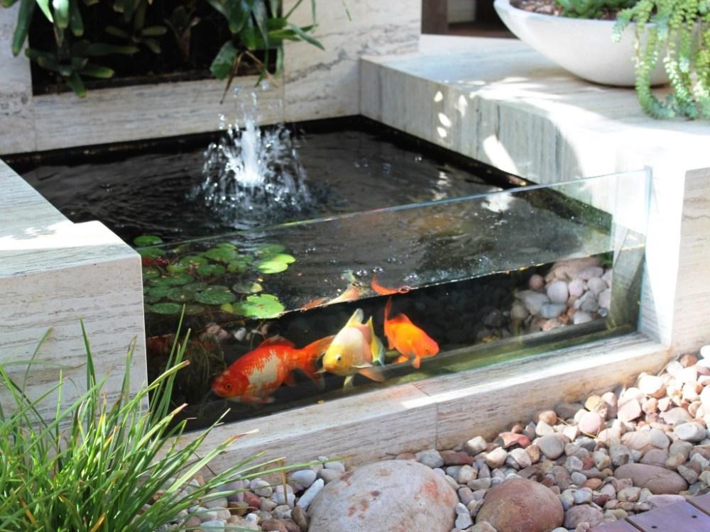 Kolam Ikan Mini Dinding Transparan
