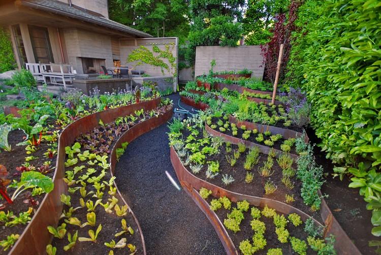 Lebih Sehat dan Hemat dengan 11 Ide Kebun Sayur Sendiri Ini