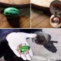 Encontraron objeto de Facundo en la estación policial de Origone
