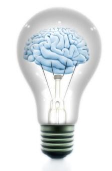 cerebros