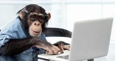mono computador