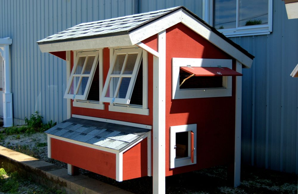 Roofed chicken coop