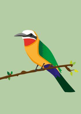 Poster van een vogel op een tak