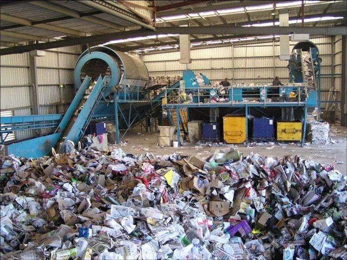 Переработка мусора как бизнес отзывы