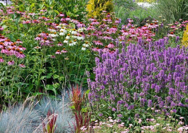 Garden Designers Bucks County