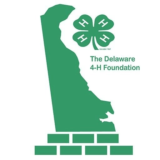 Delaware 4 H Foundation