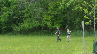 Rangers looking for the Bear