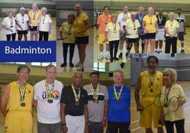 2017 DSO Badminton