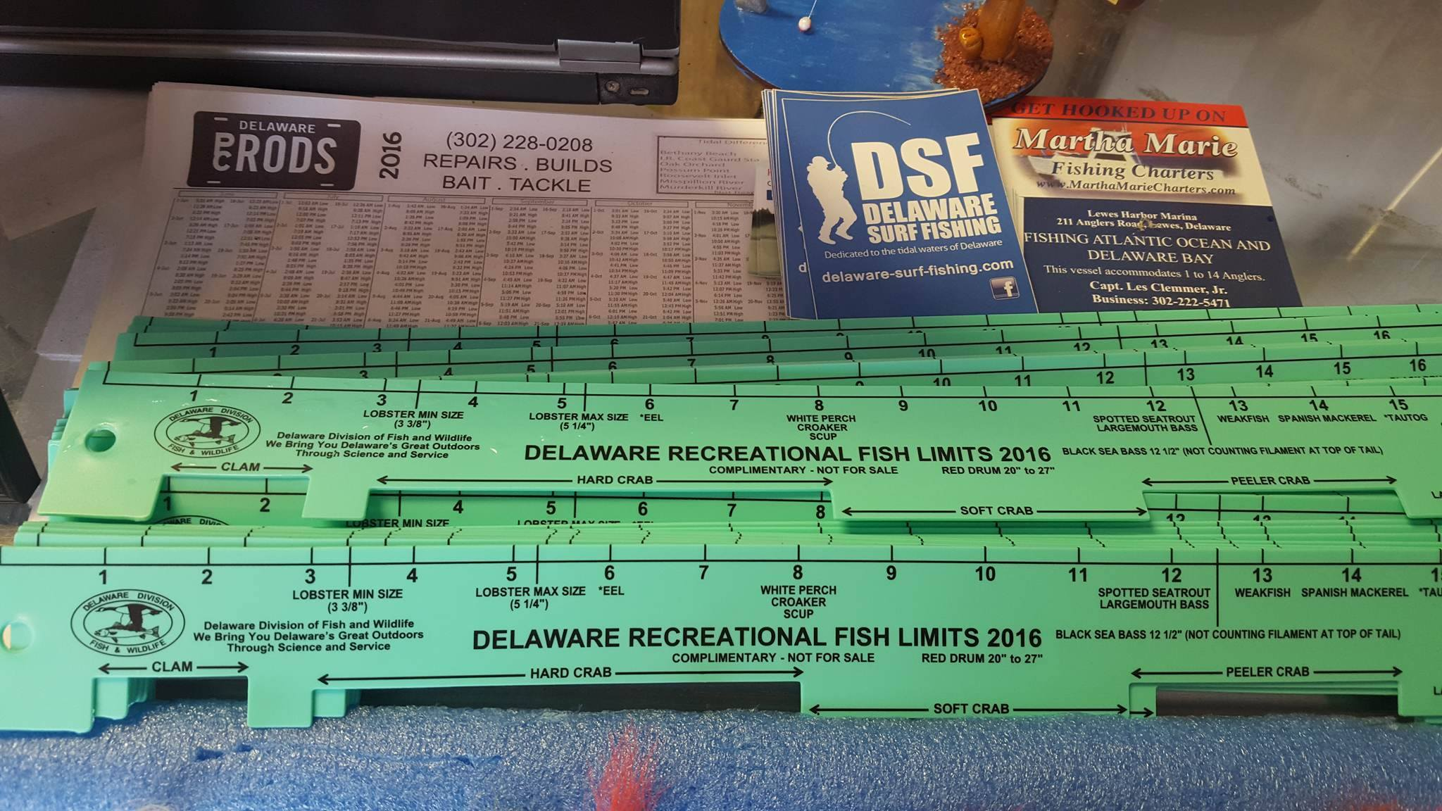 Delaware state 2016 fish rulers now available delaware surf 2016 delaware state fishing ruler nvjuhfo Gallery