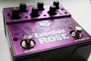 Eventide Rose