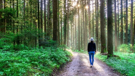 walking-alone-thinking