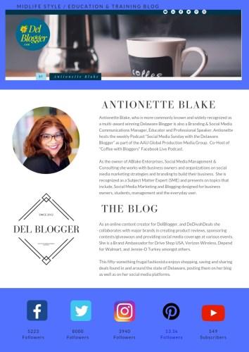Media Kit for Delaware Blogger