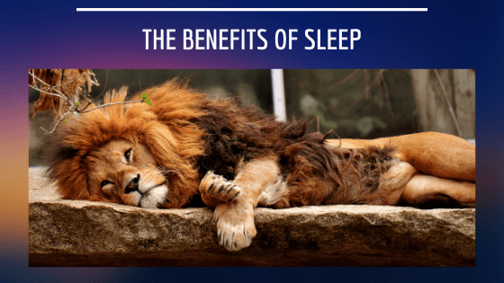 The Benefits of Sleep by DelBlogger