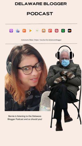 Bernie Meme Delaware Blogger Podcast
