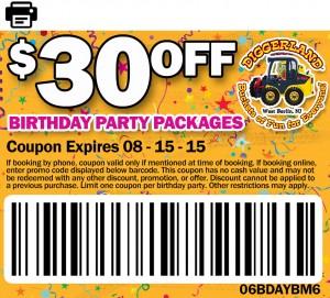 Diggerland coupon 2