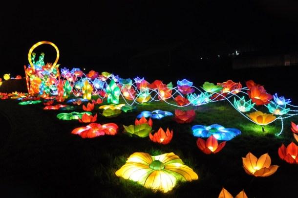 chinese lantern 3