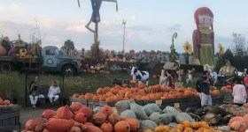 Delaware County PA and Surrounding Area Weekend Events and Fall Family Fun 10/4 – 10/6