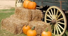 Fun Things to Do in Delaware County PA and Surrounding Areas this Weekend 10/2 – 10/4