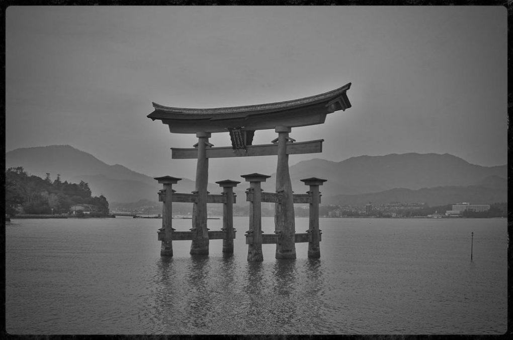 Tori in the Harbor on Miyajima Island - Nikon D7000 Nikkor AF-S 35mm | Del Cook Photography