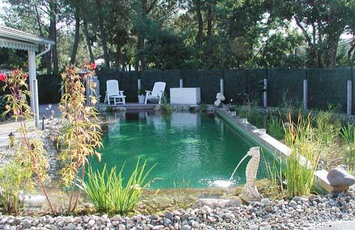 Les avantages d'une piscine naturelle biologique