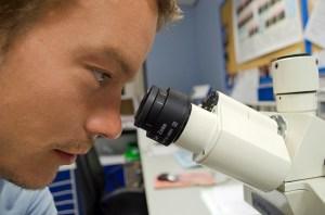 estudio microbiologia