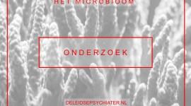 Het microbioom: de gunstige effecten van darmbacteriën