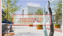 Keuzestages in het LUMC  voor aios psychiatrie