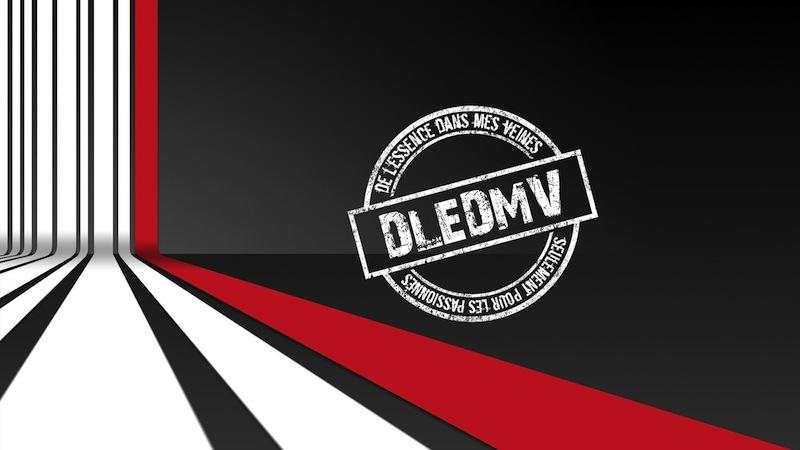 DLEDMV_400_articles_6_mois_logo