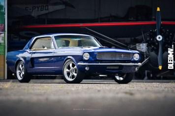 DLEDMV - Mustang & El Camino Kevin R - 01