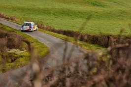 DLEDMV - Loeb 306 Maxi Rallye - 05