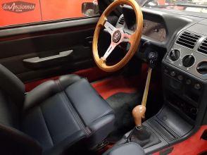 DLEDMV 2K19 - Peugeot 205 GTI Classique Sport - 004
