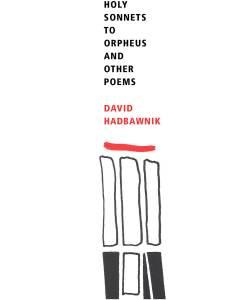 david hadbawnik holy sonnets