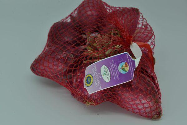 Cipolla Rossa di Tropea IGP ITALIA