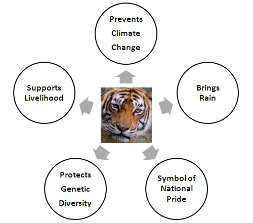 Why we must save the tiger