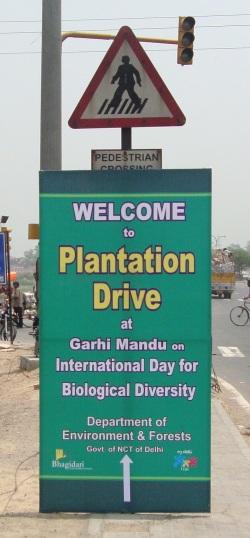 Plantation Drive on International Biodiversity Day