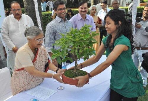 DoE to Celebrate World Environment Day at Garhi Mandu City Forest