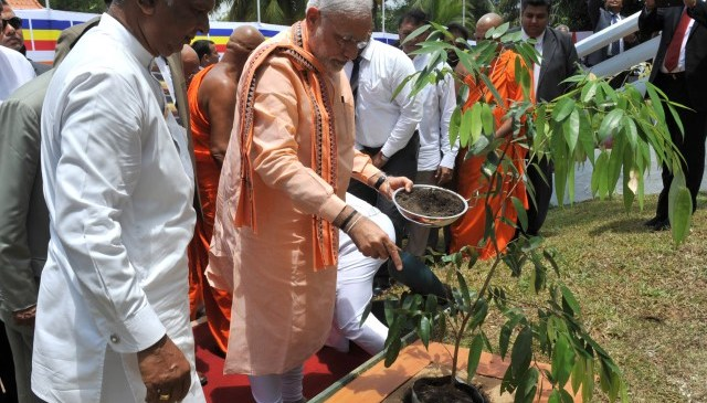 PM Narendra Modi to Initiate Nation-Wide Tree Plantation Drive on Environment Day
