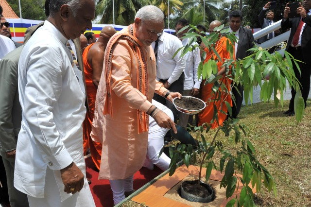 prime-minister-of-india-planting-sapling
