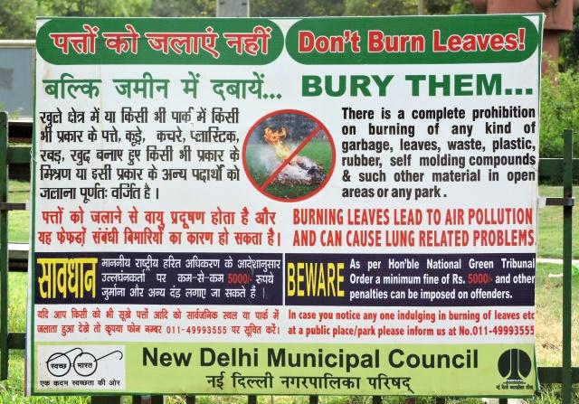 stop-burning-leaves-delhi